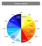 chinese-model Sleep cycle-v2